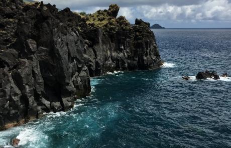 falaises Açores - dauphins et son bébé - consciences dauphins - nager avec les dauphins - nage avec les dauphins sauvages