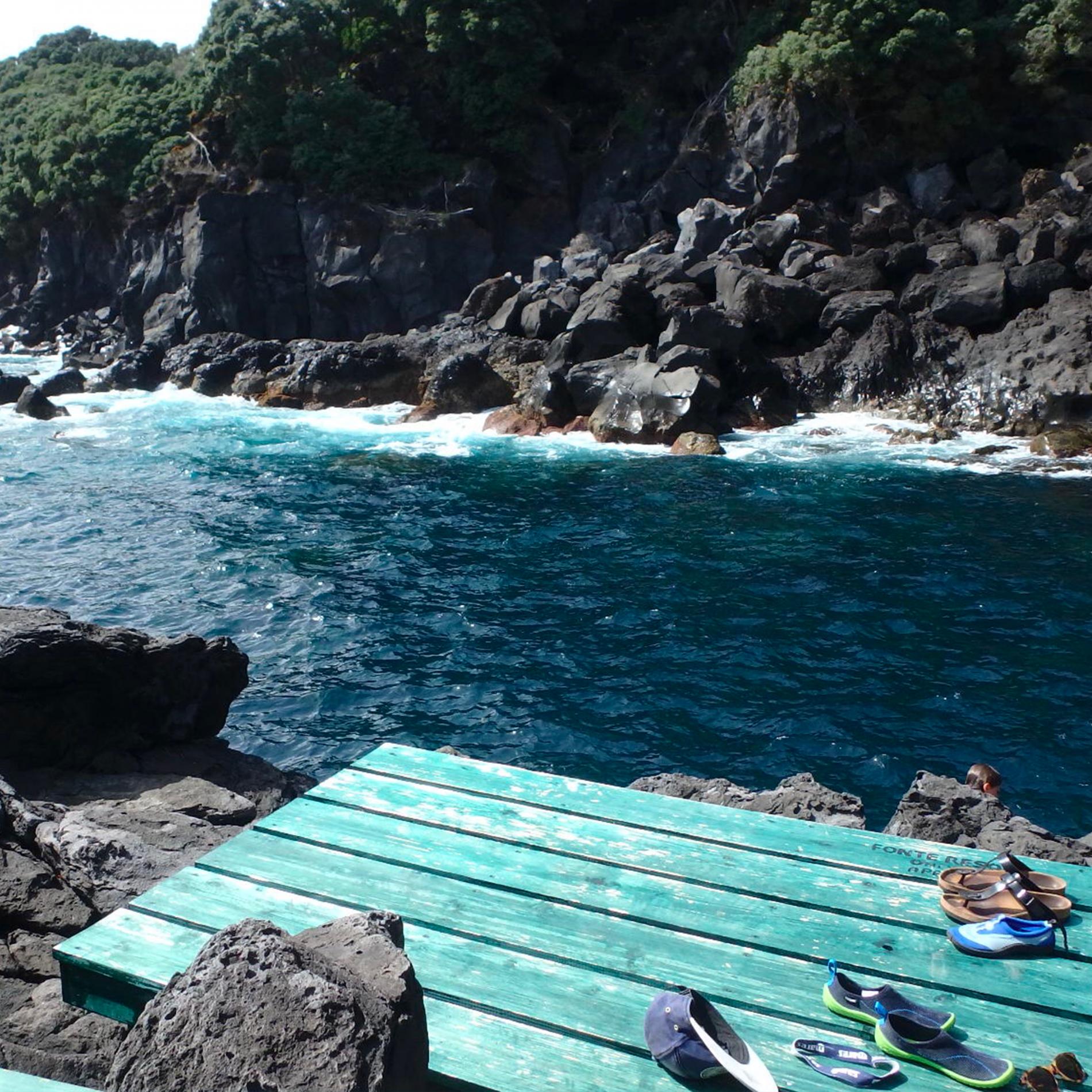 pisicne naturelle acores hotel - dauphins et son bébé - consciences dauphins - nager avec les dauphins - nage avec les dauphins sauvages